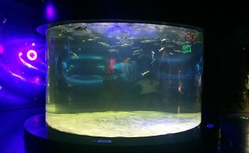 مخزن ماهی اکریلیک